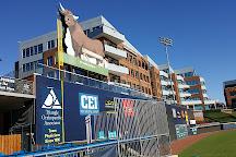 Durham Bulls Athletic Park, Durham, United States