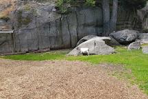 Foldvik Familypark, Larvik, Norway