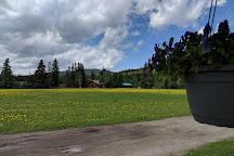 Entrance Ranch, Hinton, Canada