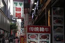 Myeongdong Shopping Street, Seoul, South Korea
