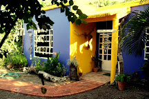 Jane Maroni Organic Designs, Punta de Mita, Mexico