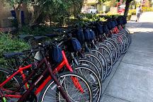 Sonoma Valley Bike Tours & Rentals, Sonoma, United States