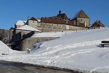 Chateau de Joux, La Cluse-et-Mijoux, France