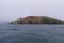 Looe Island, Looe, United Kingdom