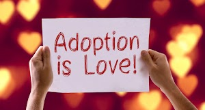 Adoption Law Center of Middle TN, PLLC