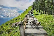 Tarey Bhir, Namchi, India