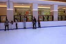 Galleria Ice Rink, Dubai, United Arab Emirates
