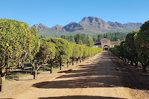 Waterford Estate, Stellenbosch, South Africa