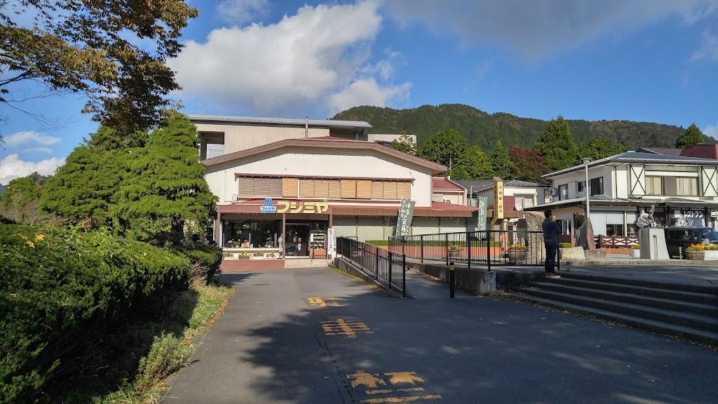 Hakone Sightseeing Cruise Port(箱根町港海盜船)