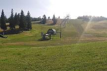 Snow Valley Aerial Park, Edmonton, Canada