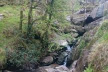 Gougane Barra National Forest Park, Gougane Barra, Ireland
