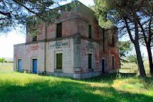 Parco Nazionale dell'Alta Murgia, Gravina in Puglia, Italy