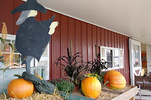 Hank's Pumpkintown, Water Mill, United States