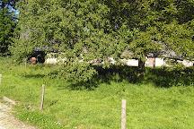 Ecomusee de la Pomme et du Cidre, Bretteville-du-Grand-Caux, France