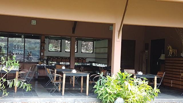 Rainforest Resort Athirapally Falls
