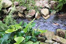 Phaeng Waterfall, Ko Pha Ngan, Thailand