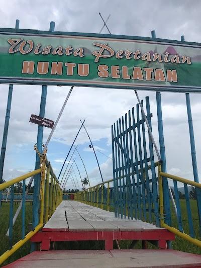 Wisata Sawah Huntu Selatan Gorontalo