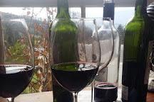 Camberley Wines, Stellenbosch, South Africa