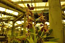 Orchid Display House, Mackay, Australia