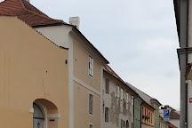 Putimska Gate (Putimska Brana), Pisek, Czech Republic
