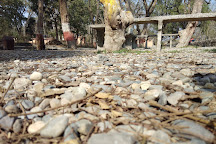 Lachhiwala Picnic Spot, Dehradun, India