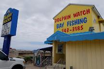 Dolphin Docks, Port Isabel, United States