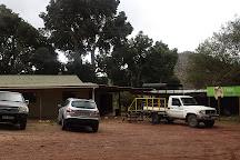 Cape Canopy Tour, Elgin, South Africa