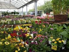Wyevale Garden Centre york