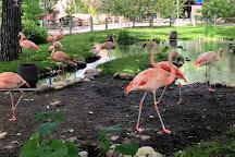 The Calgary Zoo, Calgary, Canada