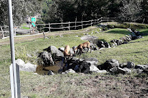Parc Animalier d'Introd, Introd, Italy