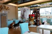 The Cats Tea Room, Hong Kong, China