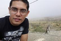 Punta Tombo National Reserve, Dos Pozos, Argentina