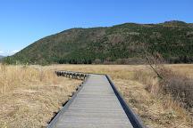 Tadewara Wetlands, Kokonoe-machi, Japan