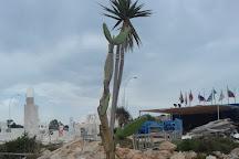 Ayia Napa Cactus Park, Ayia Napa, Cyprus