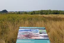 Jackson-Frazier Wetlands, Corvallis, United States