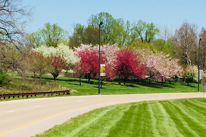 Visit The Gardens at SIUE on your trip to Edwardsville on