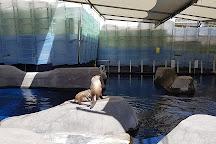 Melbourne Zoo, Melbourne, Australia