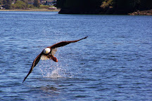 Wild Pacific Charters, Ucluelet, Canada