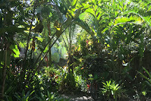 Pure Jungle Spa, Puerto Viejo de Talamanca, Costa Rica