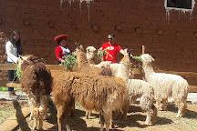 Andean Colors, Urubamba, Peru