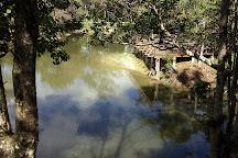 Parque Ambiental dos Sabias, Sao Jose, Brazil