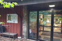 Hidden Oaks Nature Center, Annandale, United States