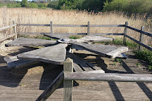 Stodmarsh National Nature Reserve, Stodmarsh, United Kingdom