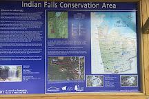 Indian Falls, Owen Sound, Canada