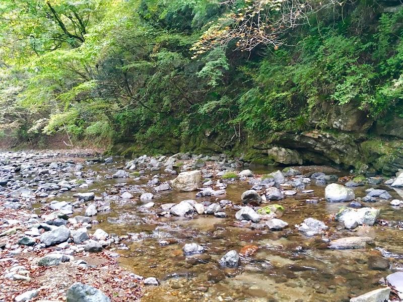 松茸山自然の森公園