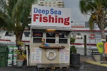 New Lattitude Sportfishing, Fort Lauderdale, United States