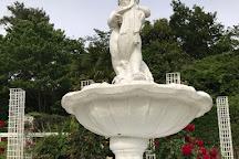 Ikuta Ryokuchi Rose Garden, Kawasaki, Japan