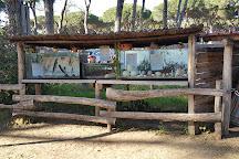 La Fattoria degli Animali, Rome, Italy