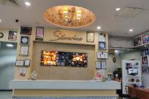 Silverine Spa & Salon, Jaipur, India