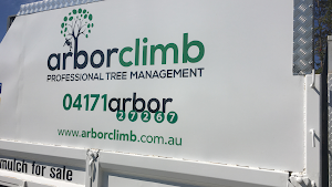 Arborclimb Sunshine Coast
